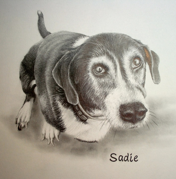 Sadie Pencil