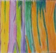 Bark from a Rainbow Gum Tree