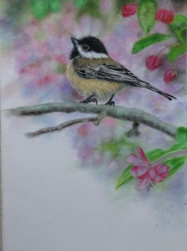 Chickadee-dee-dee, Sound of Spring
