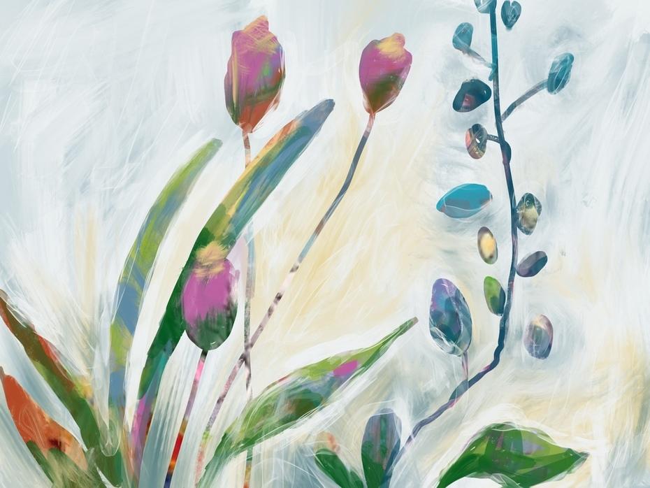 A wee flower garden