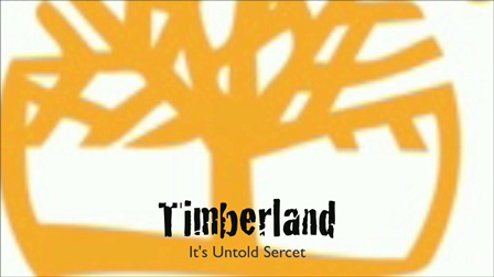Timberland PSA