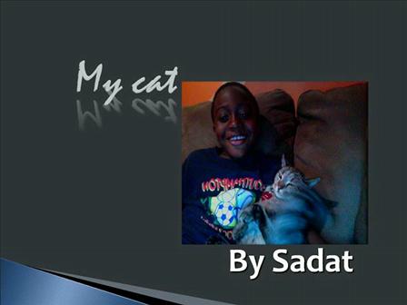 My Cat by Sadat