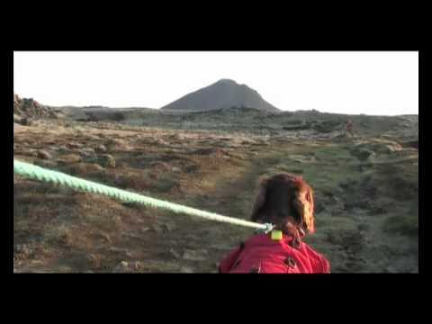 Climbing the 400m mount Keilir with an Irish setter