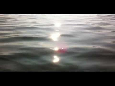 Singing For Water - Overtones & Bass