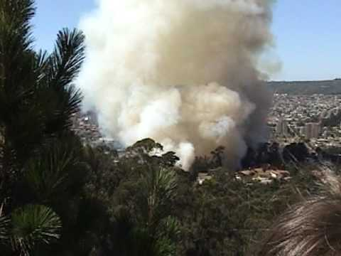 forest fire in the city of Viña del Mar, CHILE