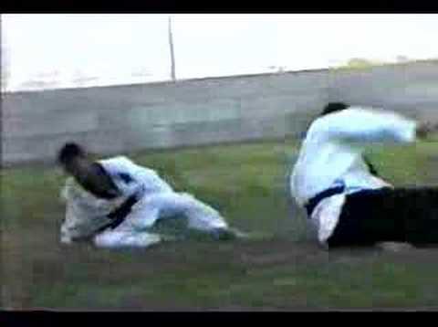 Grandmaster Rogers Brick Breaking, Demonstrating Kwa Asilia Avita Sanaa w/ his son & Sparring