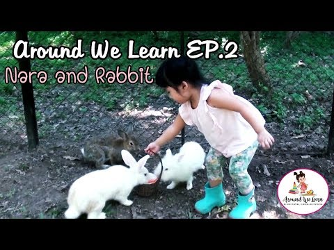 Around We Learn EP.2 - นาราป้อนอาหารน้องกระต่าย