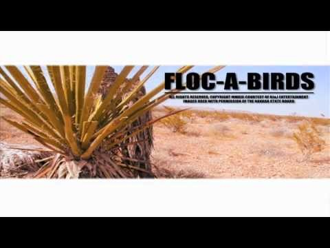 "MrBenjamin - ""Floc-A-Birds"""