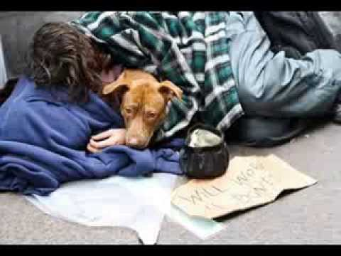 """""""Christmas With My Best Friend"""" The Homeless And Their Pets."""