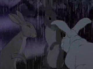 Watership Down (Part 3/10)