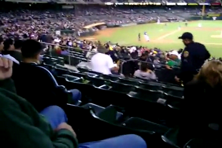 Man Gets Tasered At Baseball Game