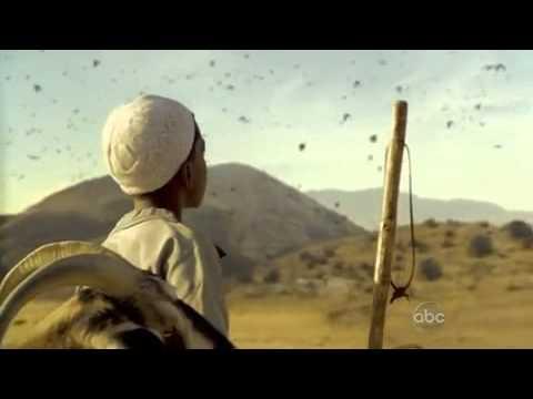 Mass Killing of Birds in Scene of 'FlashForward' on ABC October 8 2009 Showing Strange Device