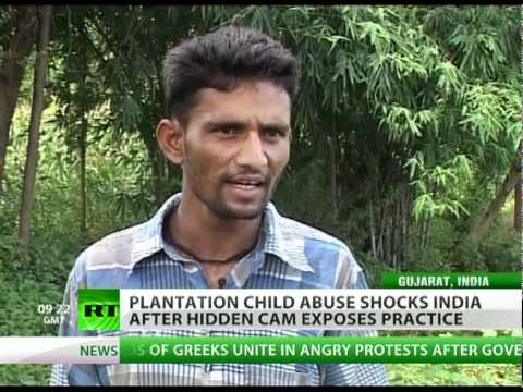 Cheated out of Childhood: Hidden cam exposes plantation abuse