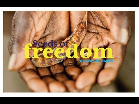GMOs, Enslavement & Poverty: Seeds of Freedom Documentary