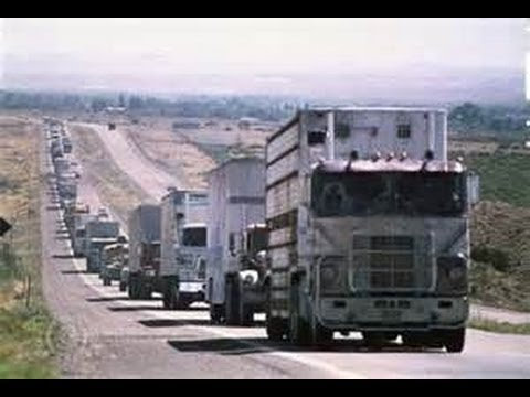 """TRUCKERS TO RIDE ON D.C.! CALL FOR ALL AMERICANS TO """"STRIKE""""! DO NOT GO ANYWHERE OCT. 11 TO 13!"""