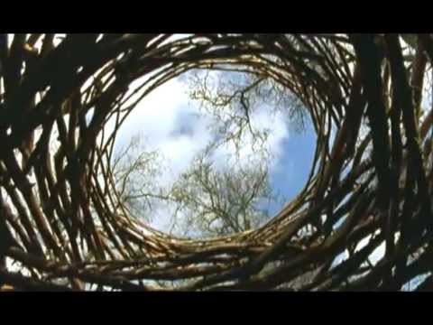 Rivers & Tides - Andy Goldsworthy Documentary 2003 [FULL]