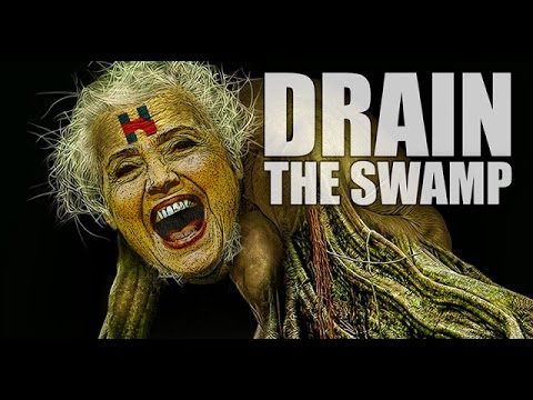DRAIN THE SWAMP ACT - One Year In Jail & $50,000 Fine
