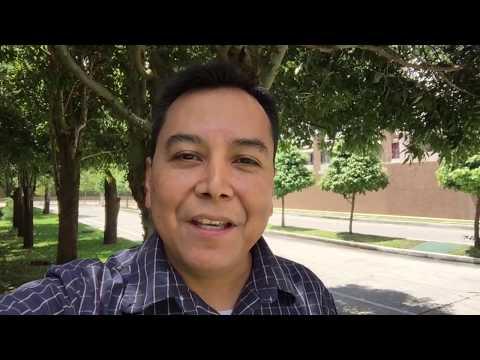 Cuatro claves para que nos vaya bien en la vida - Luis Bravo