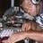 DJ TRe