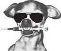 dogitydog
