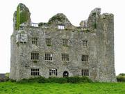 lemeneagh_castle_thumb_3785