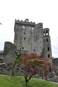Sprintime at Blarney Castle