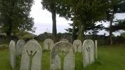 Unheralded Circle of Irish Stones