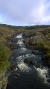 A stream in the bog