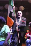 Hogan Irish flag