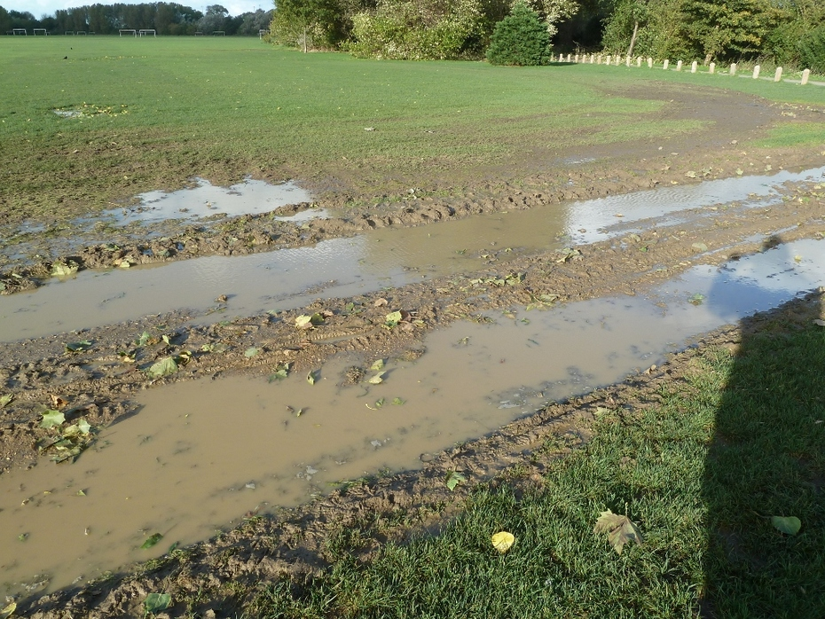 Event damage on Hackney Marshes