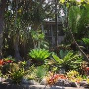 Tropical paradise house