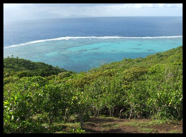 Naturi land in Batiki Island