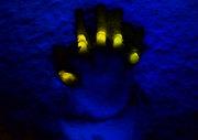 Blue Hand 1