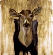 Deer Head Three