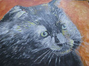 Cat Paintings and Drawings
