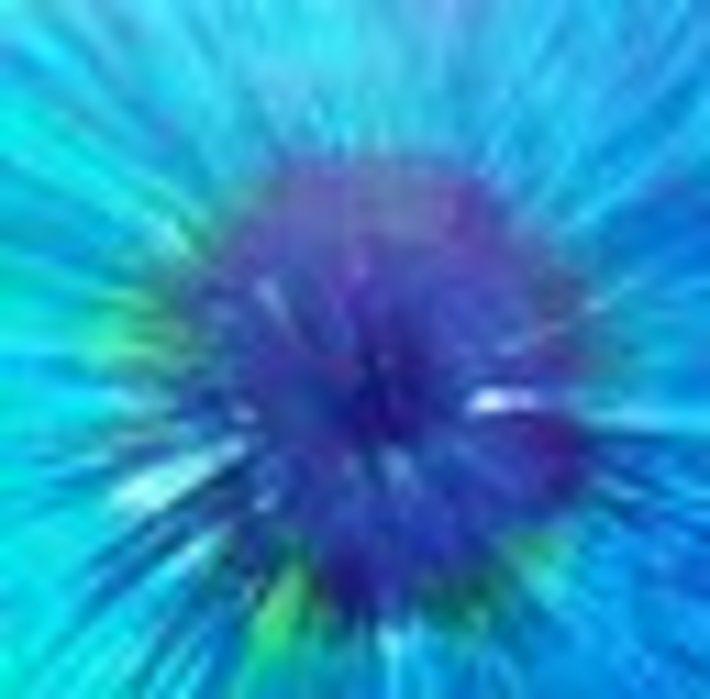 La grande poilicromia