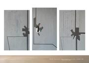 Strange behavior  (Triptych)