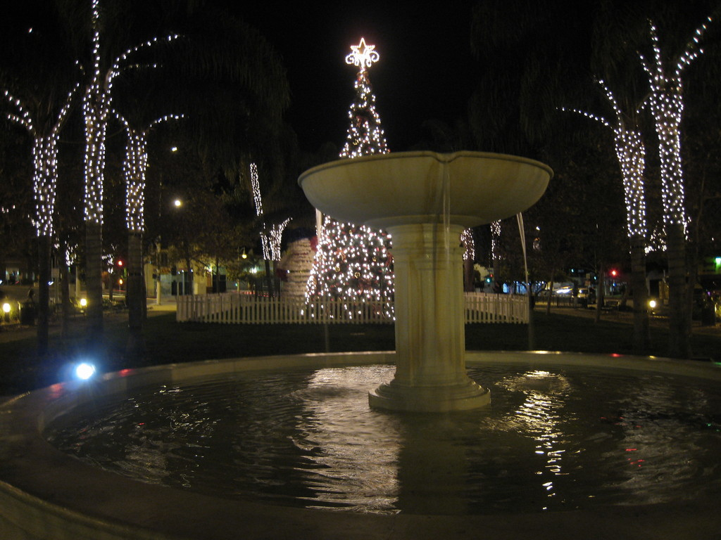Leimert Park Christmas Tree Lighting