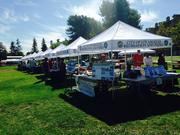 Baldwin Village Community Affair_ Resource Booths
