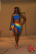 The Afribbean Fashion Show 2009