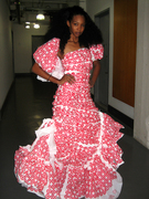 The Plastic Target Gown
