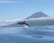 pico Açores1