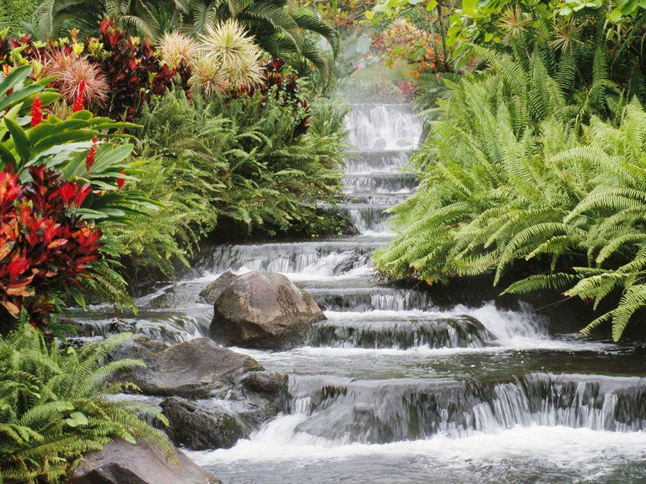 Sabedoria das aguas