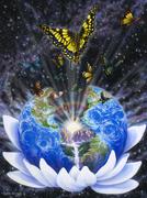 Planetacborboletas