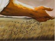 semear-colher-nova-vida-caxiasMAIOR