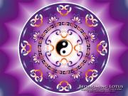 Yin Yang Mandala_