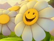 Aprende a sorrir