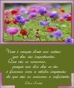 poesias Chico