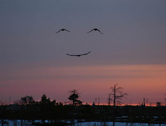 SorrisodeDeus