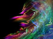 policolor